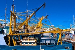 Fishing boats in the harbour - Fremantle