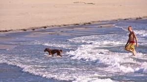 The South Beach...dog beach