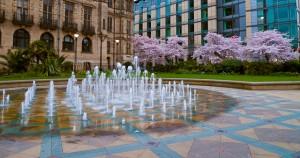 Sheffield Peace Gardens in Spring